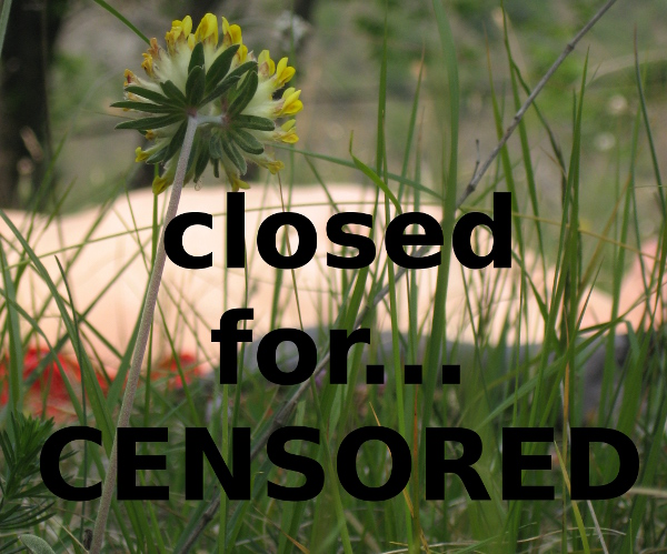 fb_censored1