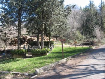 L'altarino davanti al Grillo
