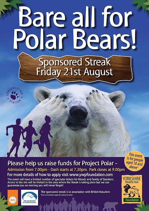 Locandina della manifestazione ecologica a favore degli orsi polari