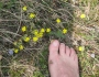 A piedi nudi