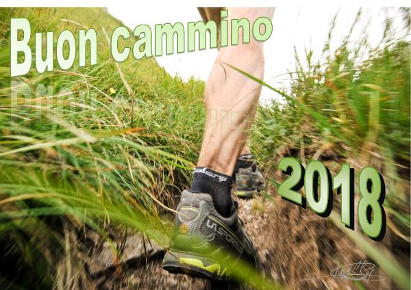 Buon Cammino 2018 600