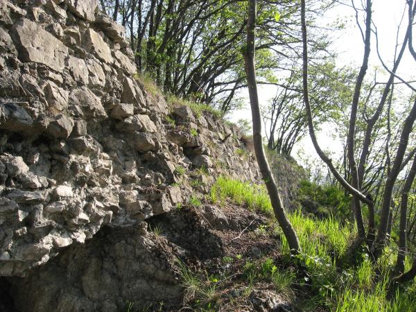 Ruderi dell'antico maniero che sorgeva sulla cima della rocca